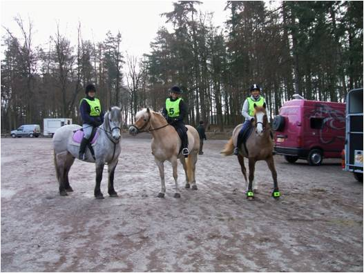 Tracey Dickson riding her Cob x Thoroughbred Peppi, Claire Reed-Entwistle with her Haflinger Sonnet and Zellie Skeggs with Rannoch, who is a Highland