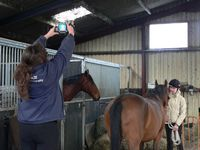 Jackie taking an image of the horse