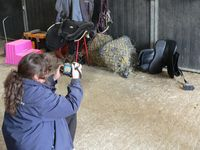 Jackie taking an image of another saddle