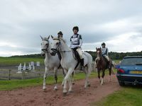 W14 Sophie Webber with Rhydfendigaid Cadno, W15 Helena France with Dot Com and W16 Emily Pierson with Master Bounce