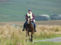 11 Carol Taylor with Marlak Super Dude at The Ullswater Ride 2014
