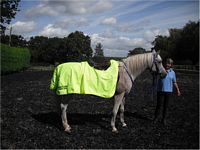Zhiwah ready for the weather in his Prize rug